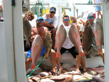 Click here to see some of the Key West Fish